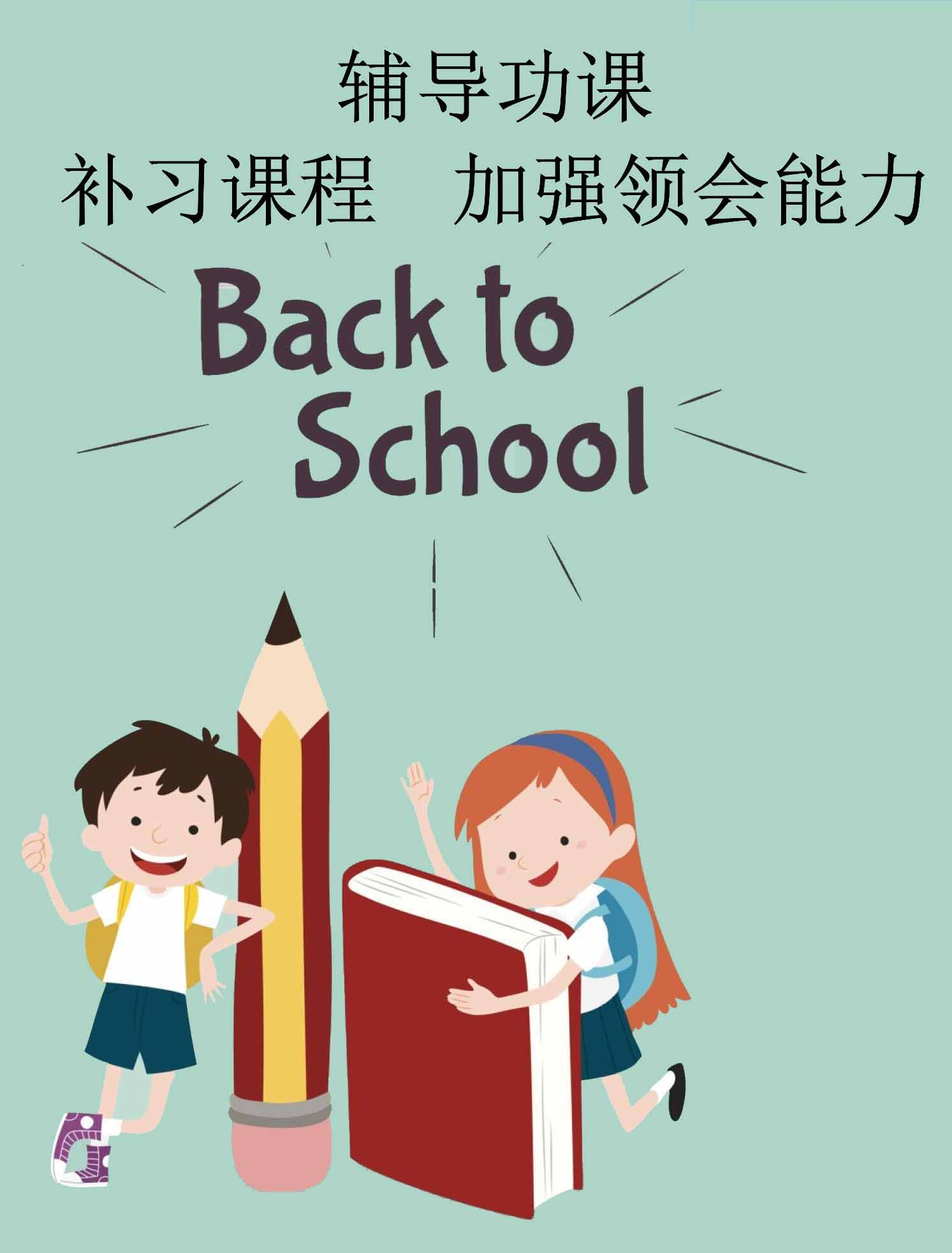 辅导功课 补习课程    加强领会能力  小学     中学